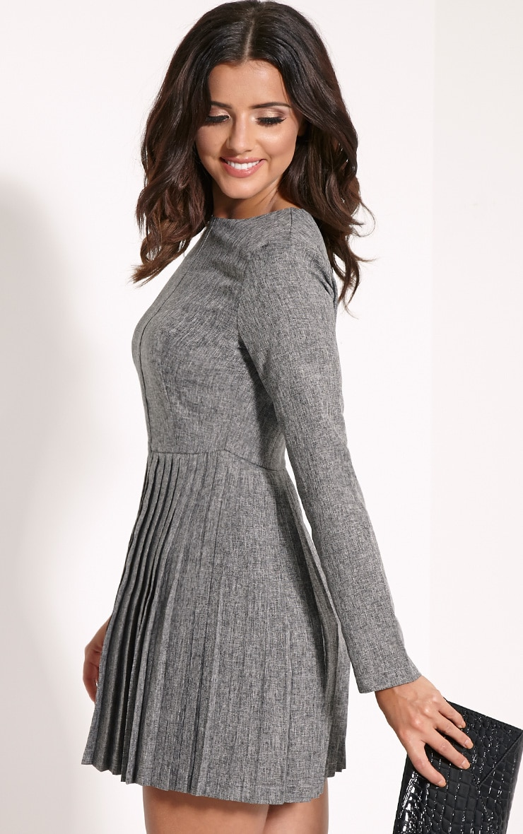 Kay Grey Pleated Long Sleeved Mini Dress 3