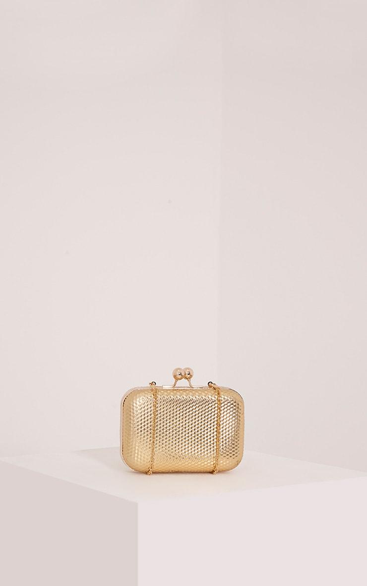 Morgan Gold Box Clutch Bag 3