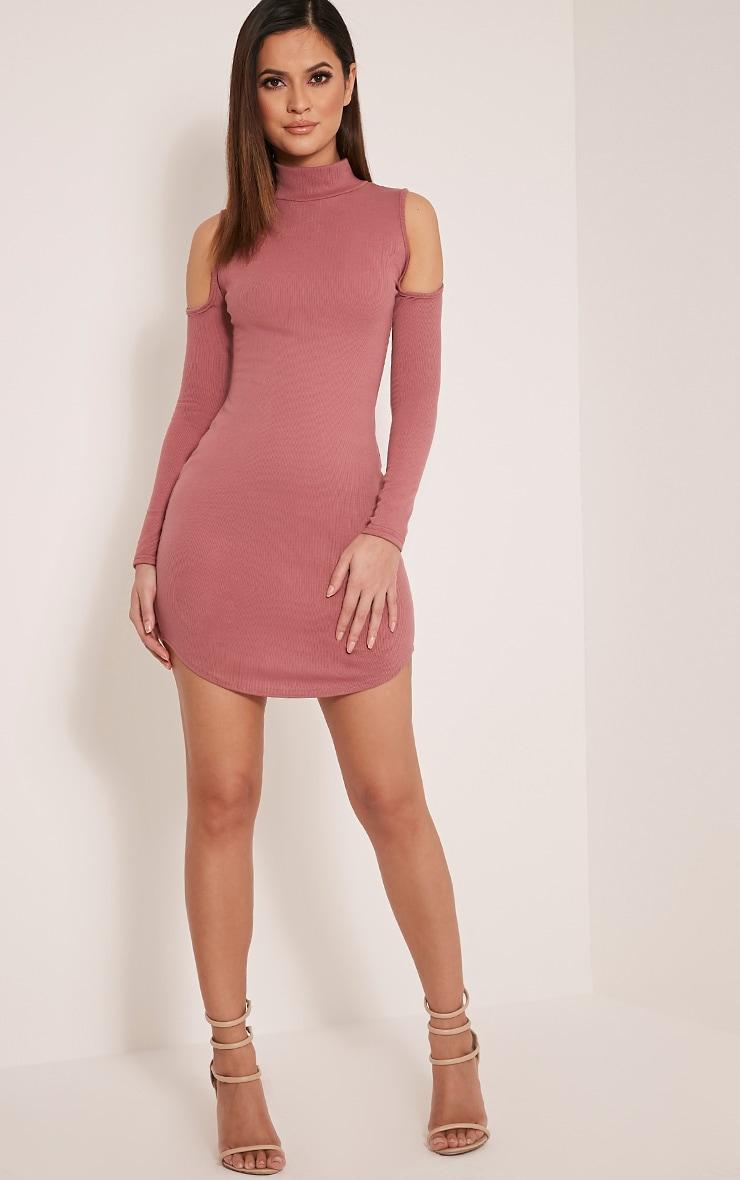 Renny Rose Ribbed Cold Shoulder Dress 5