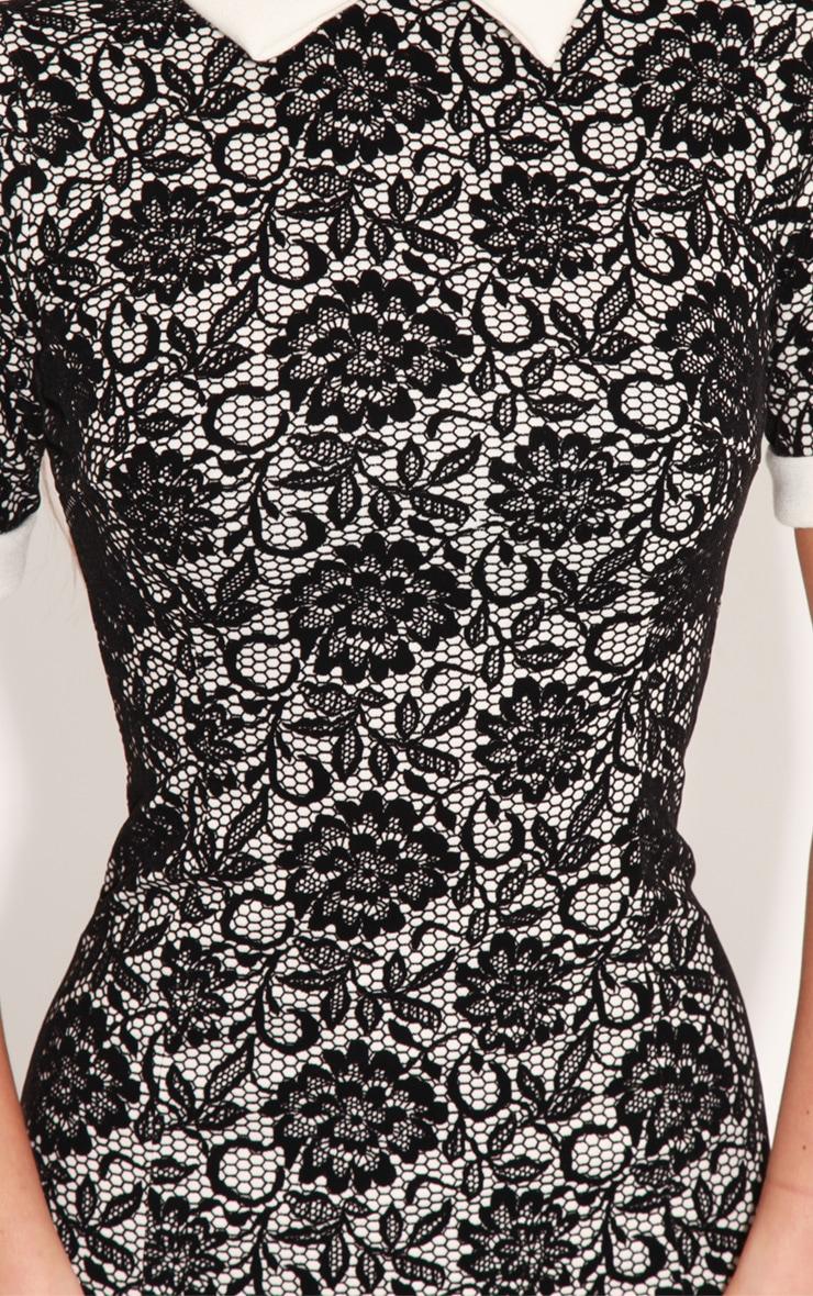 Sammy Floral Textured Velvet Collar Dress   5