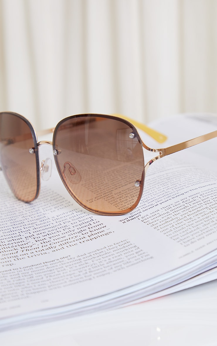Brown Rimless Oversized Rounded Sunglasses 3