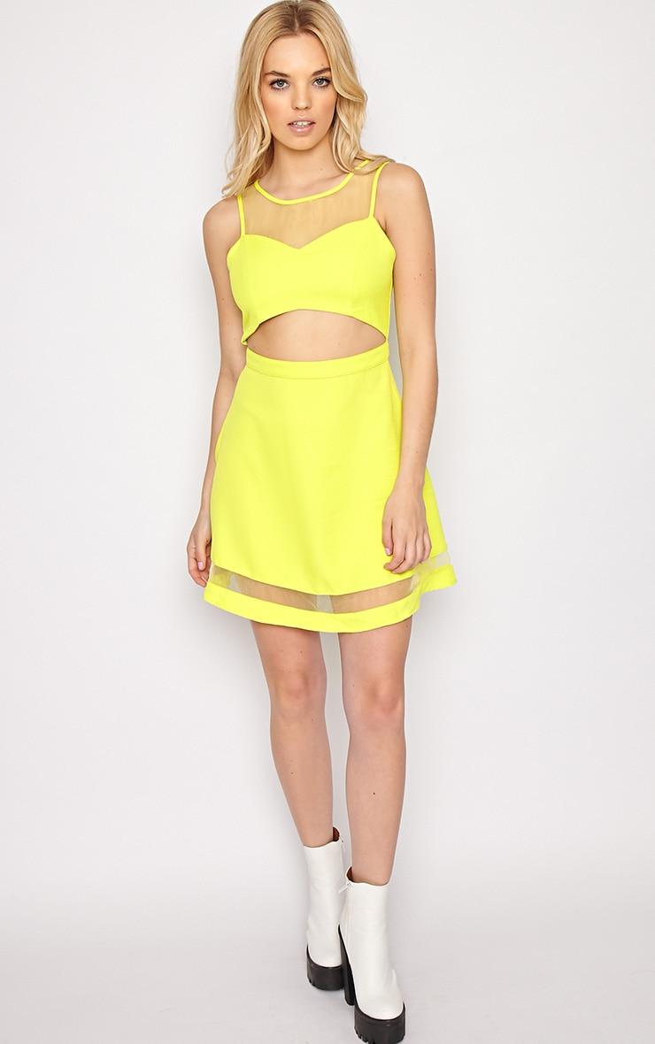 Holly Lime Mesh Skater Dress  3