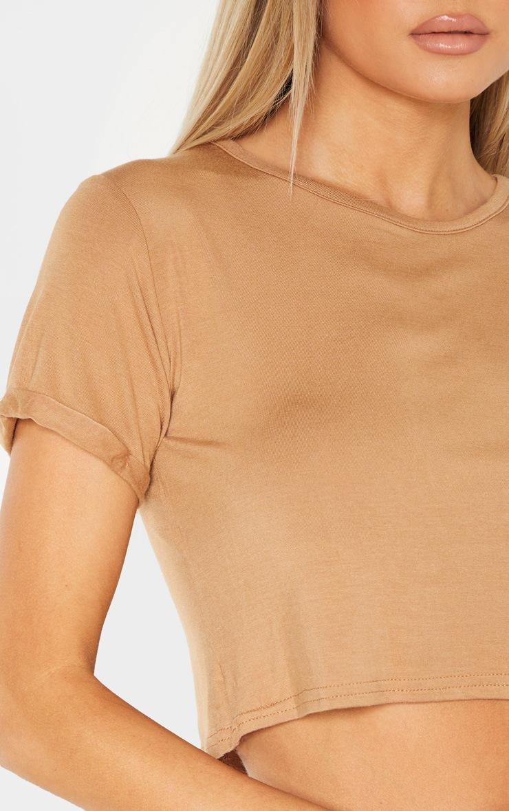 Tall Camel Basic Roll Sleeve Crop T Shirt  5