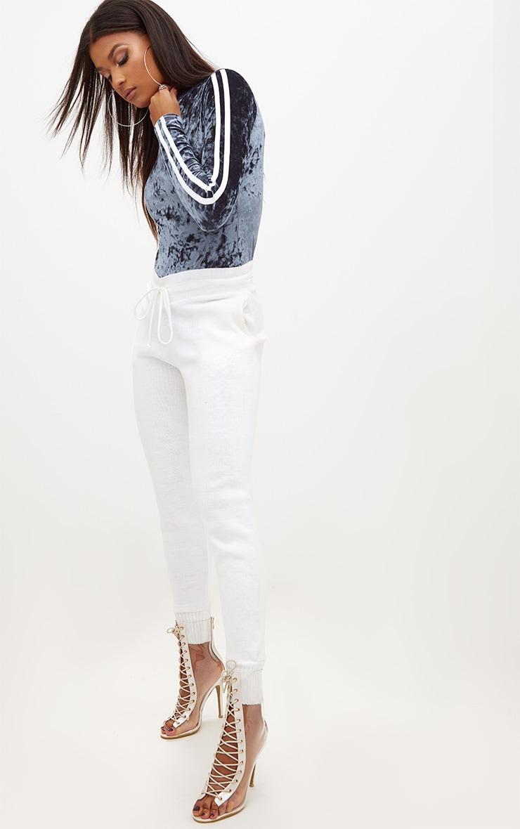 Silver Crushed Velvet Striped Longsleeve Thong Bodysuit 4