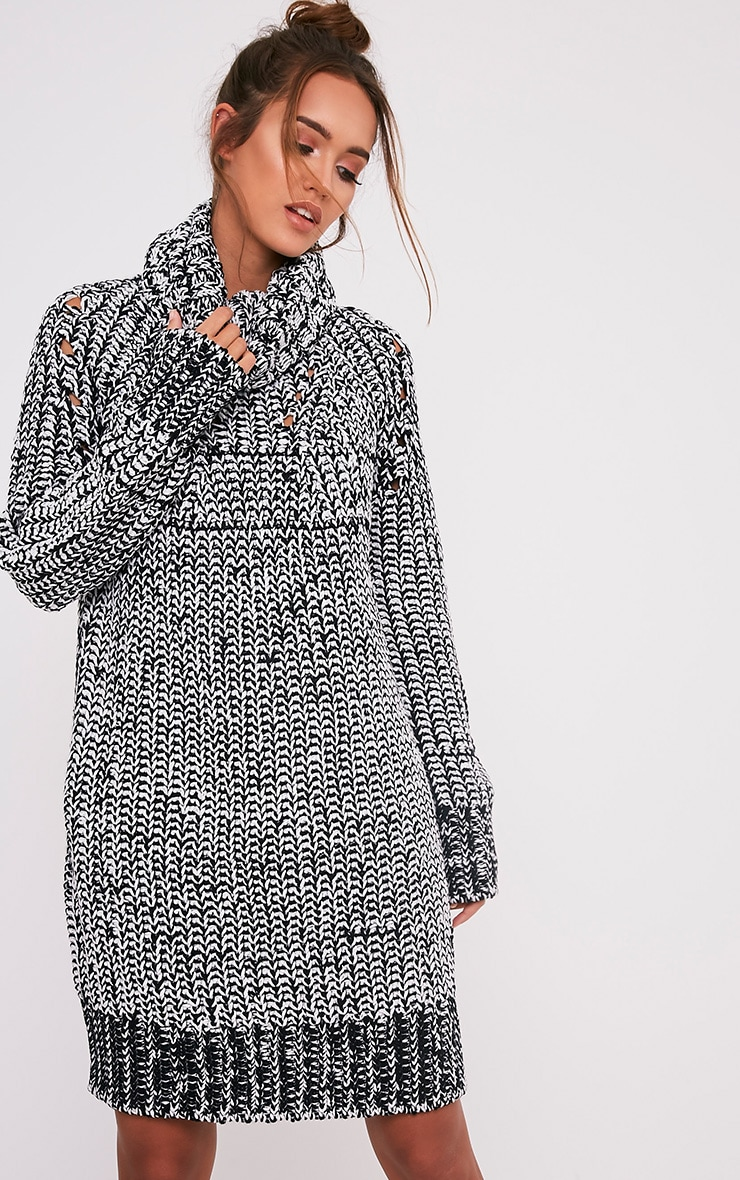 Xael Monochrome Knitted Roll Neck Oversized Dress 1