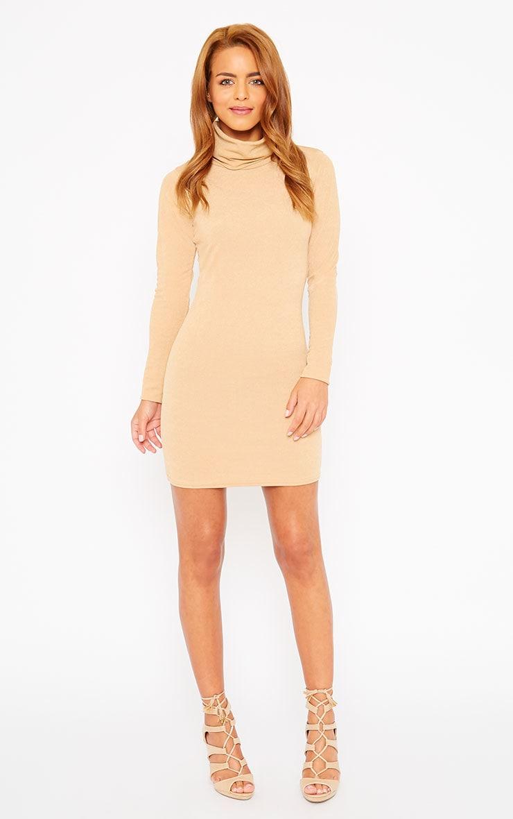 Catrina Camel Roll Neck Dress 3