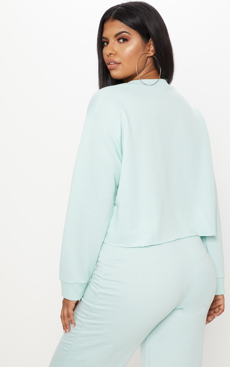 Plus MInt  Extreme Crop Sweater 2