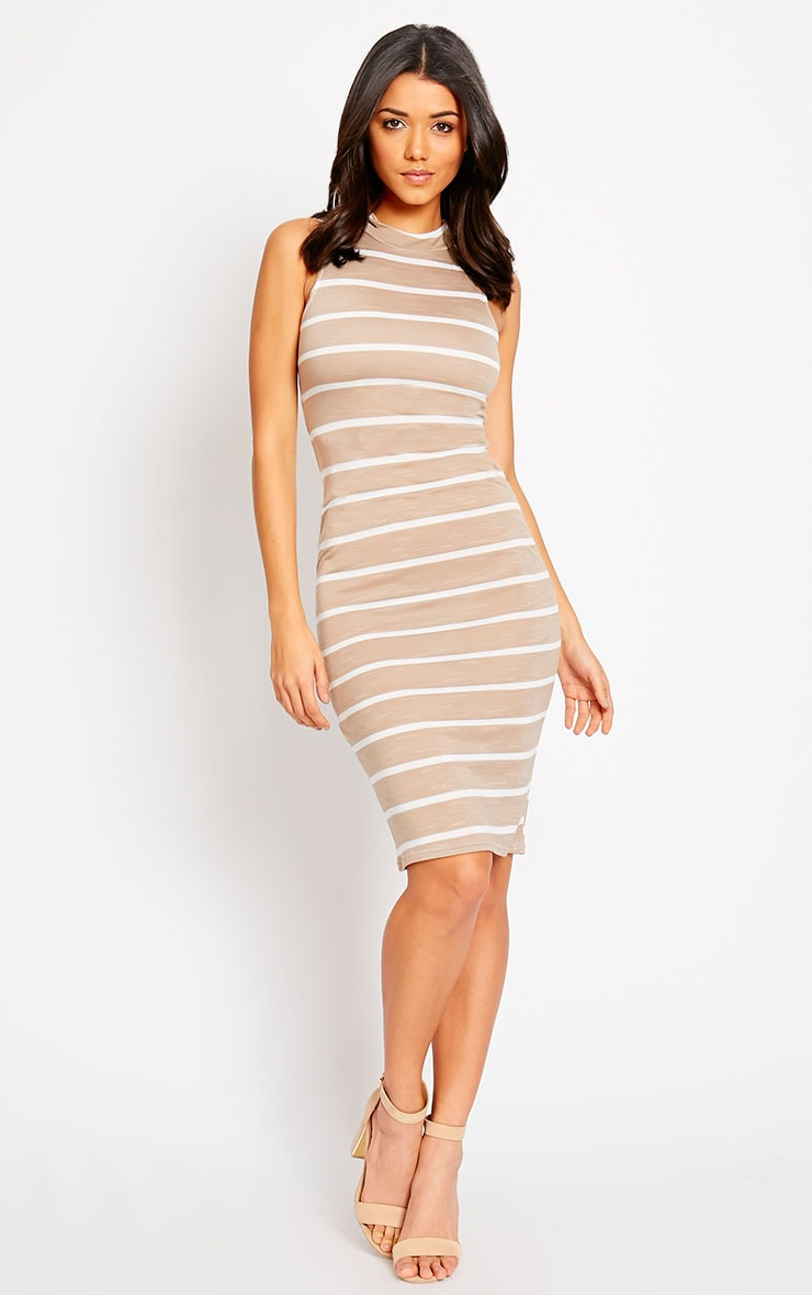 Santo Stone Turtle Neck Stripe Dress 1