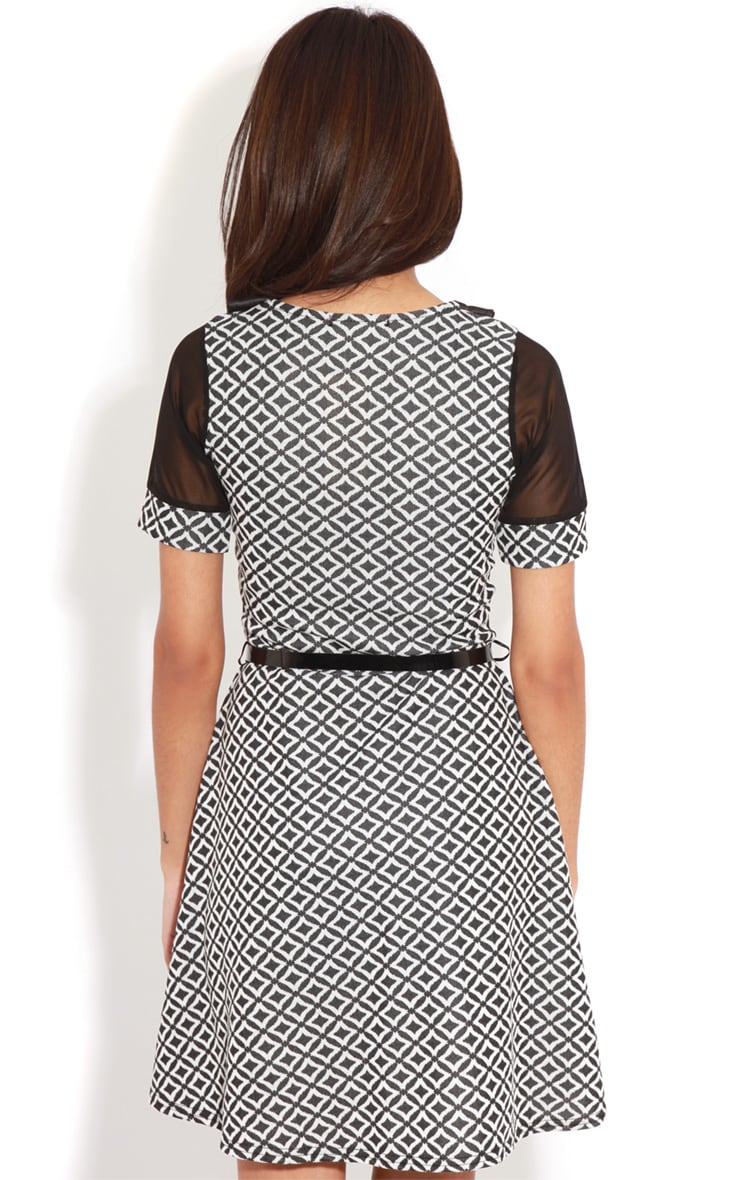 Patti Monochrome Contrast Collar Skater Dress 2