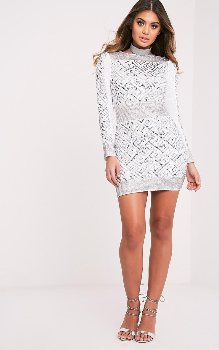 Kimya Silver Premium Sequin Velvet Panel Bodycon Dress 6