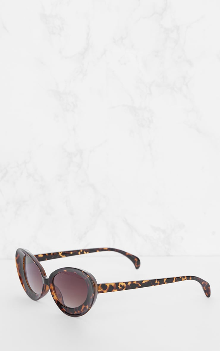 Tortoise Shell Oval Retro Sunglasses 3