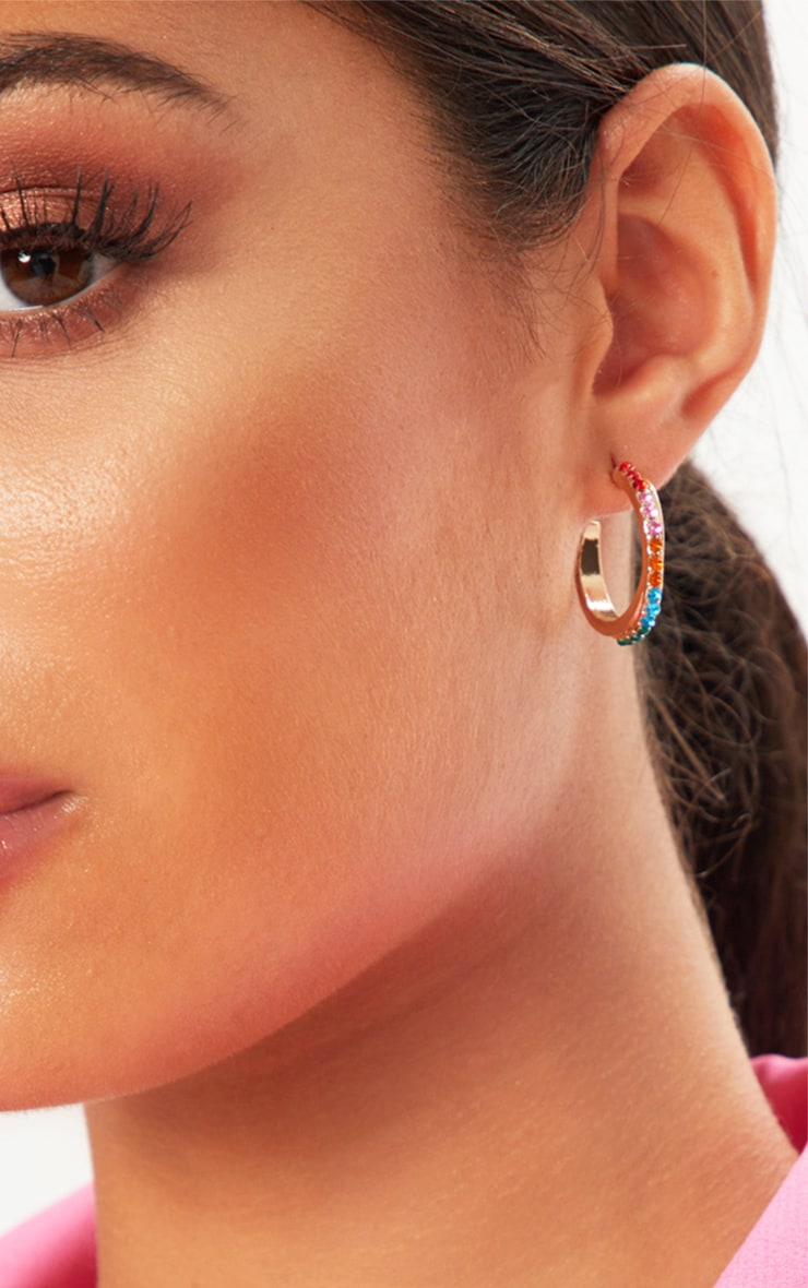 Multi Colour Gem Hoop Earrings 1