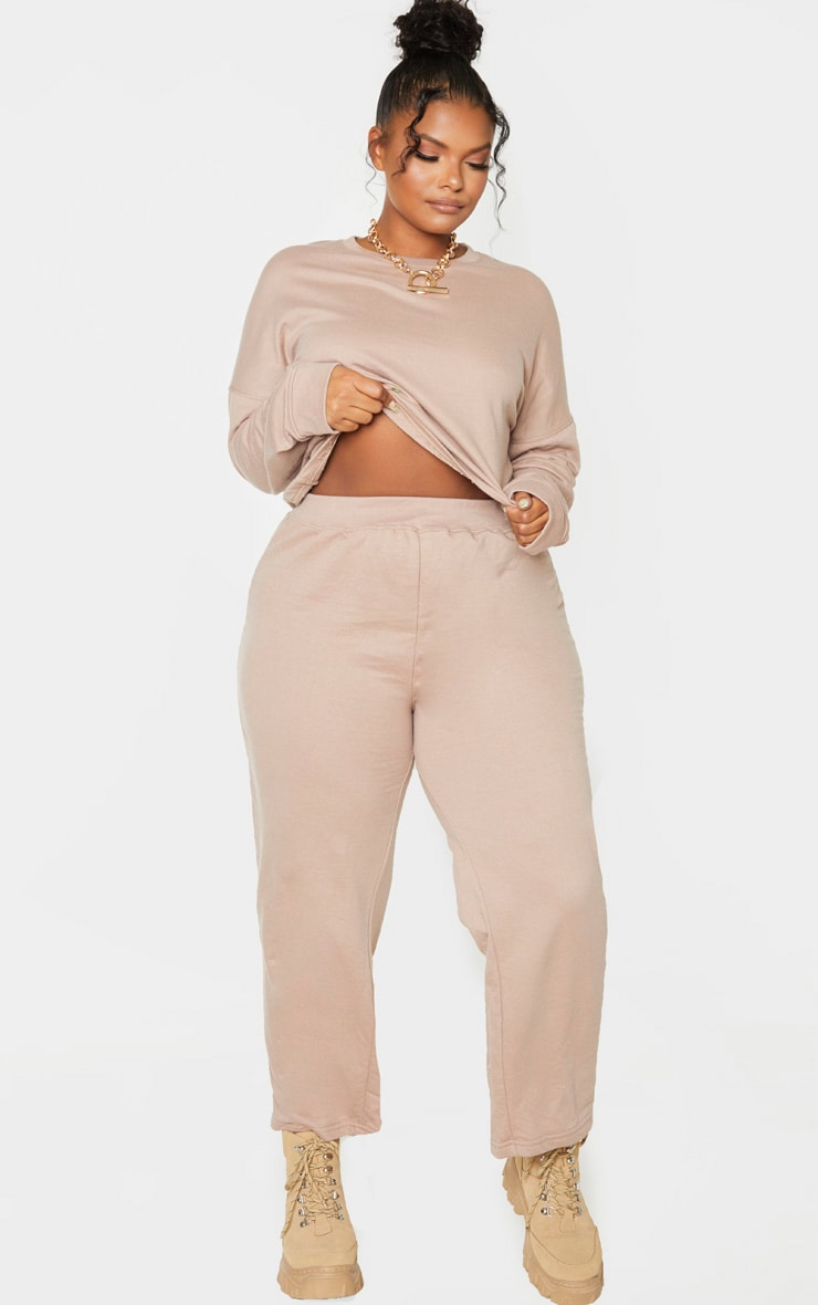 Plus Stone Sweat Round Neck Cropped Jumper 4