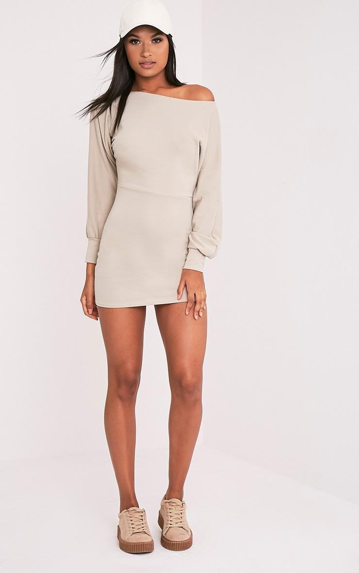 Narlie Stone Off The Shoulder Sweater Dress 5