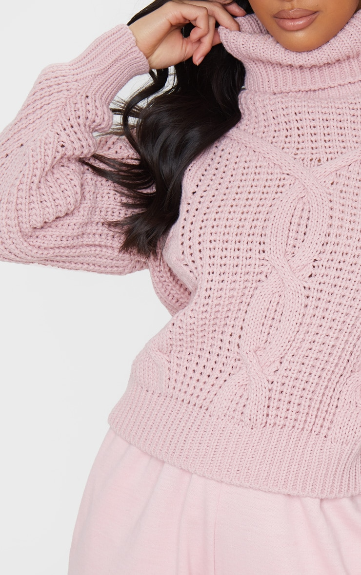 Petite Blush Roll Neck Knitted Long Sleeve Sweater 4
