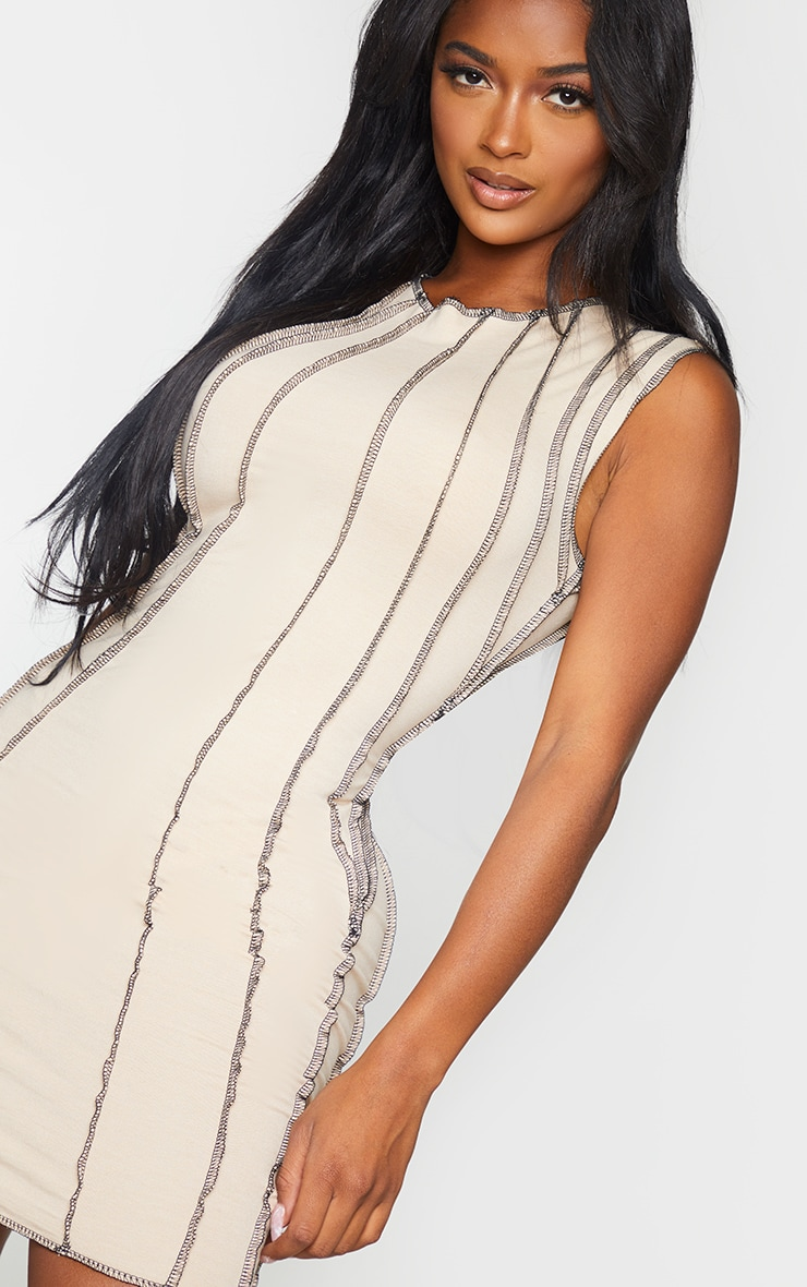 Shape Stone Contrast Seam Detail Sleeveless Bodycon Dress 4