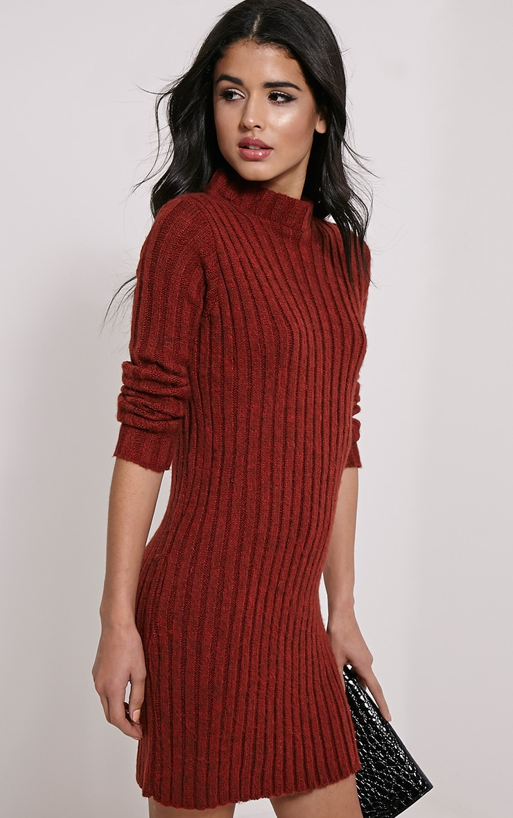 Kirby Rust Marl Long Sleeve Knitted Dress 4
