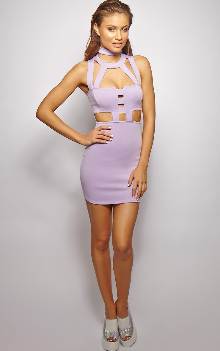 Xirena Lilac Caged Mini Dress 4