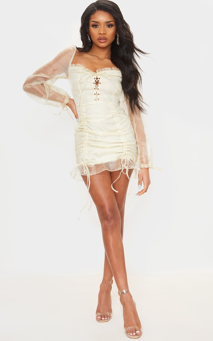 Petite Champagne Lace Up Puff Sleeve Dress 3