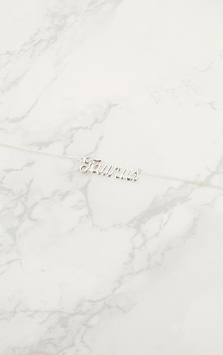 Taurus Zodiac Silver Necklace 2