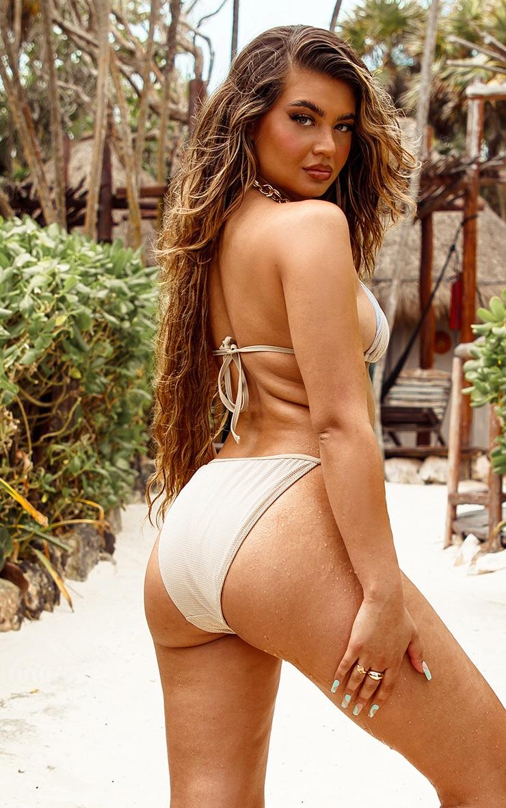 Natural Net Textured Triangle Bikini Top 2