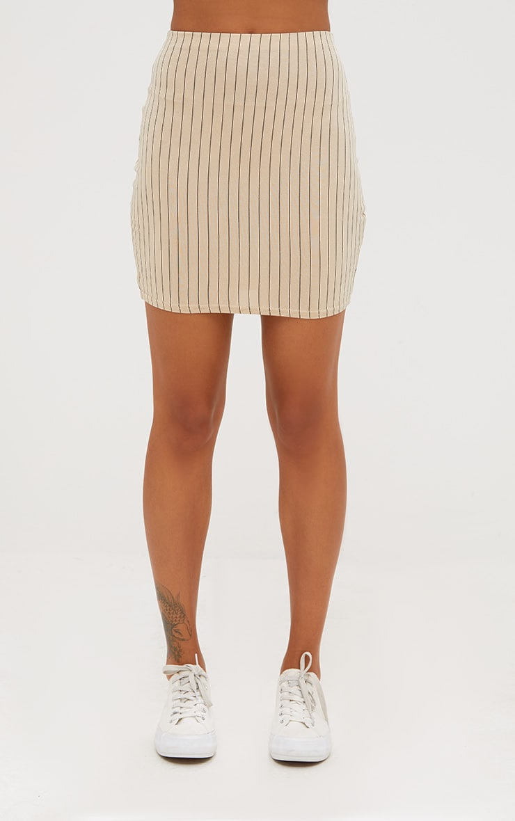 Stone Jersey Pinstripe Mini Skirt 2