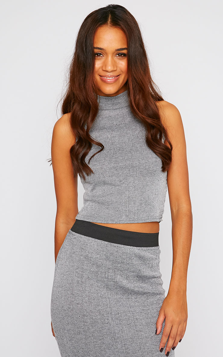 Libbie Charcoal Ribbed Crop Top  1