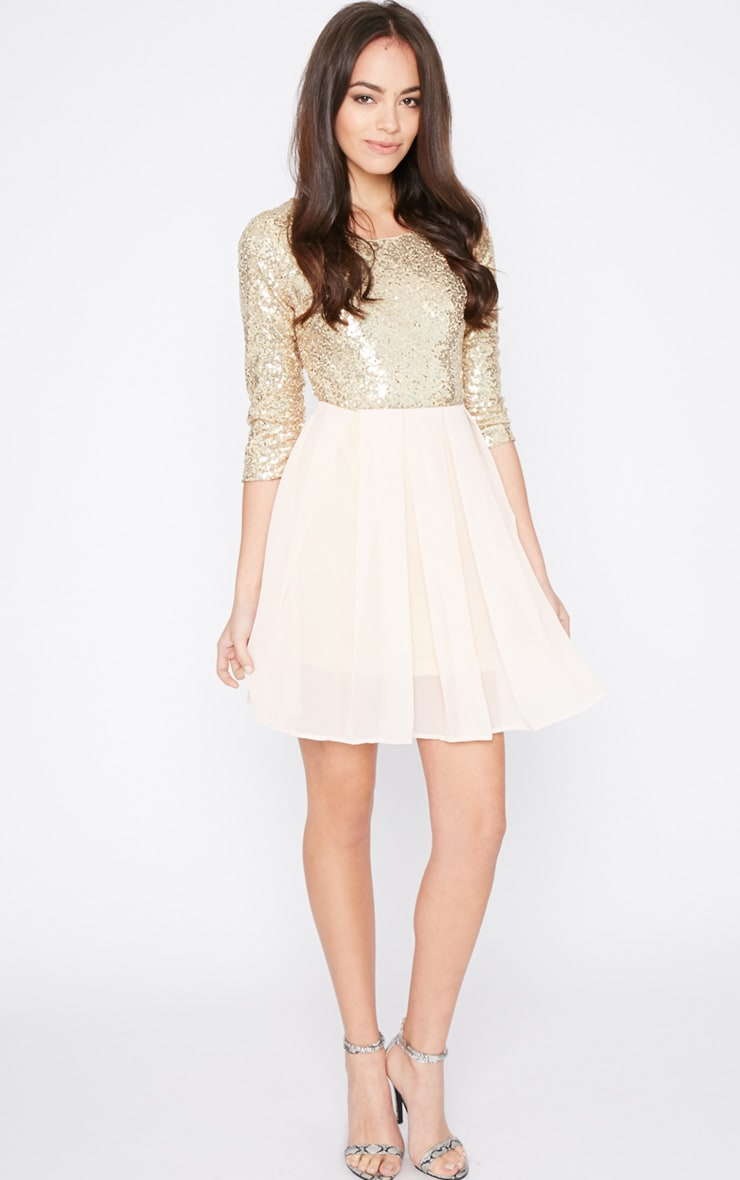Tiva Gold Sequin Blush Skater Dress 3