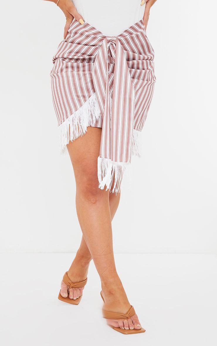 Clay Stripe Tassel Hem Mini Skirt 2