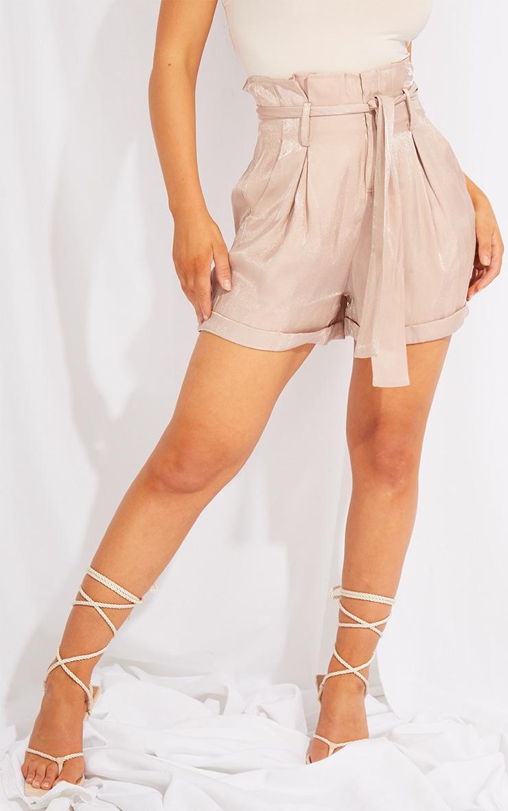 Mink Shimmer Paperbag Shorts 2