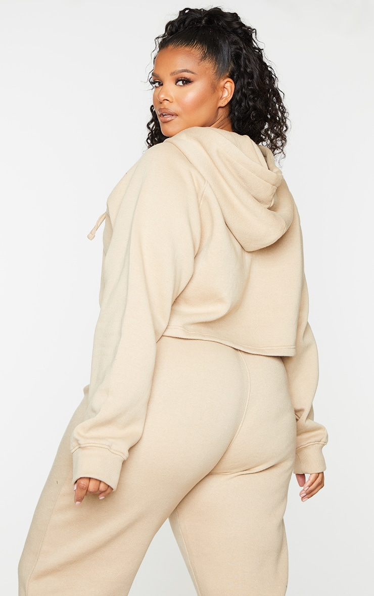 PRETTYLITTLETHING Plus Stone Badge Zip Up Cropped Hoodie 2