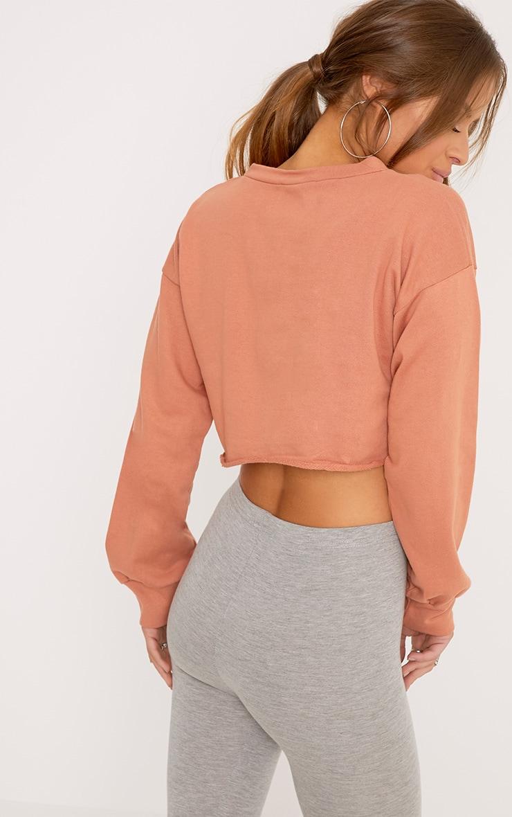 Petite Beau Deep Peach Cropped Sweater  2