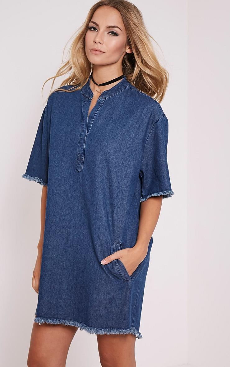 Kristel Blue Denim Shift Dress 3