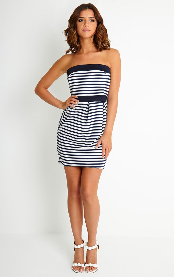 Serena Stripe Bandeau Mini Dress 3