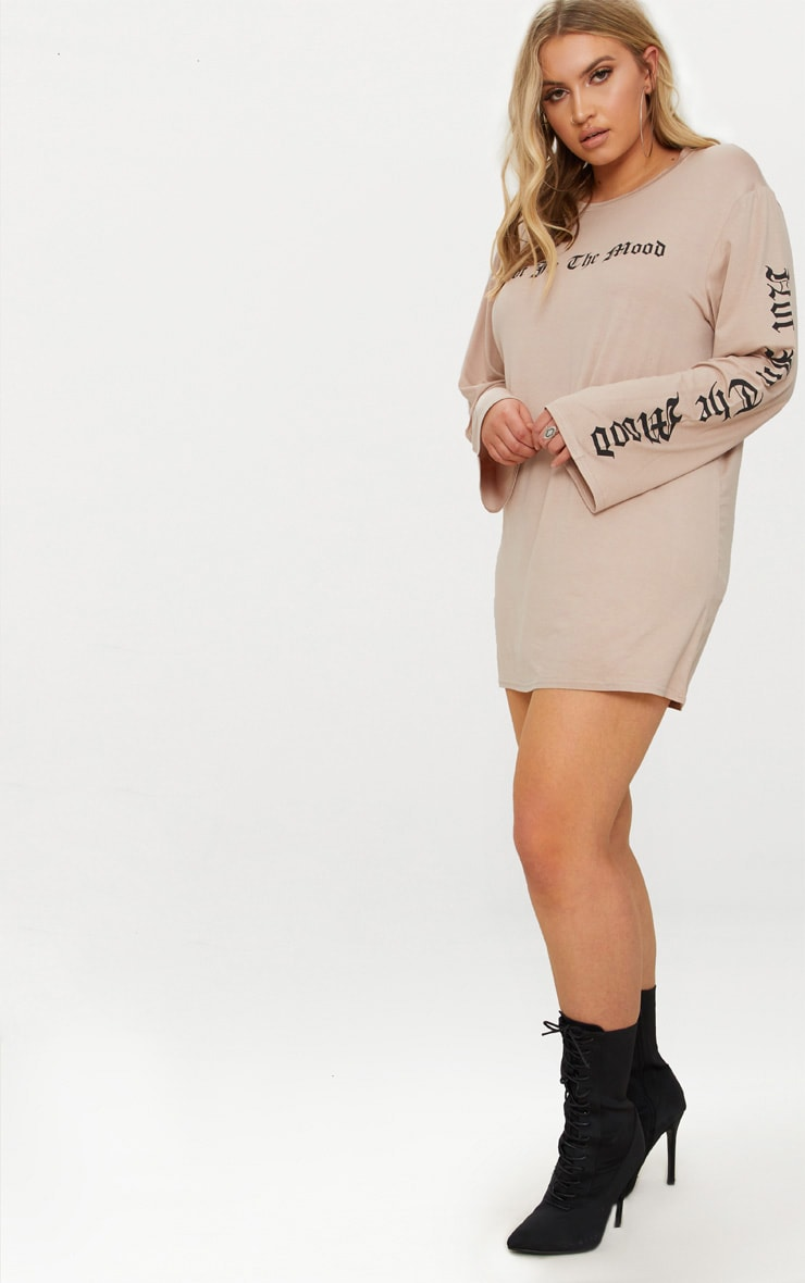 Plus Stone Oversized Slogan T-Shirt Dress 4
