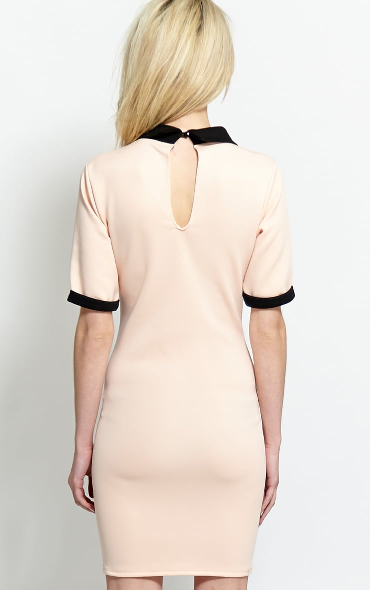 Katrina Blush Pink Collar Dress 2
