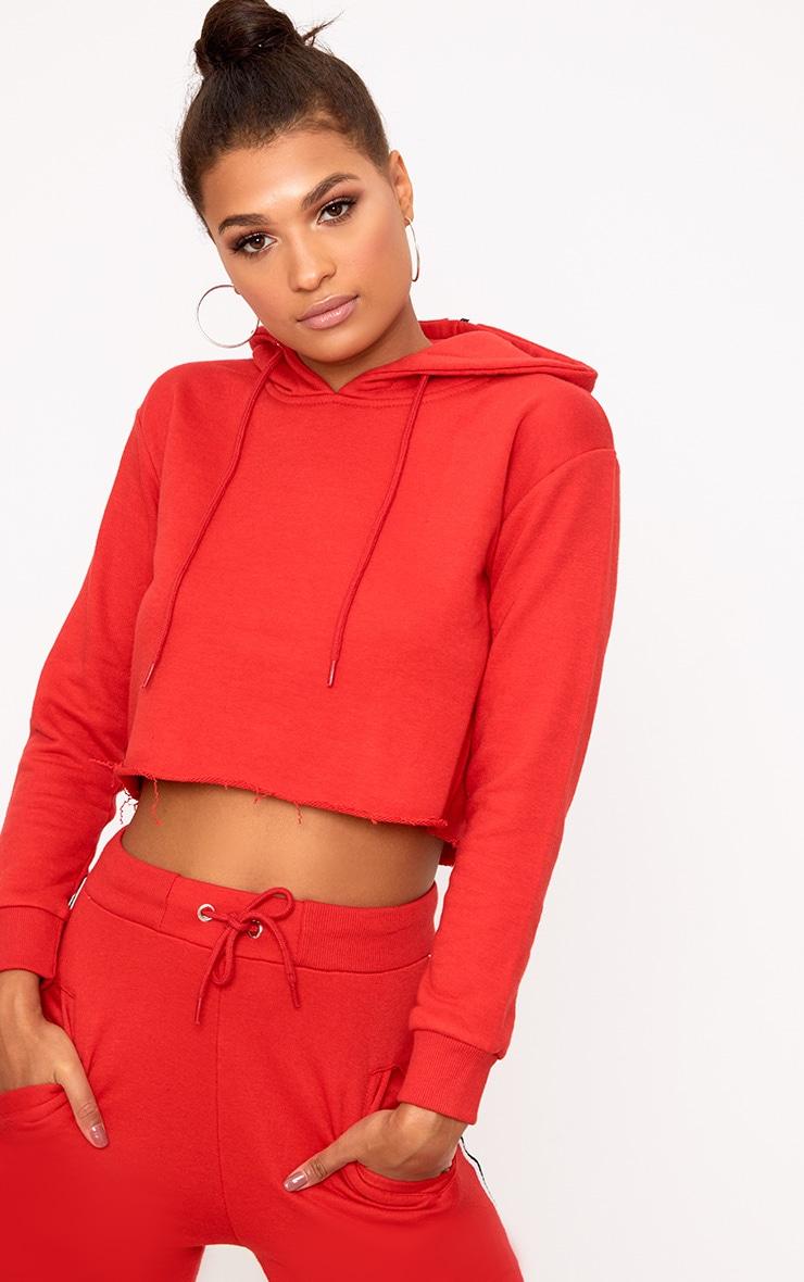 Red Side Stripe Hoodie 1