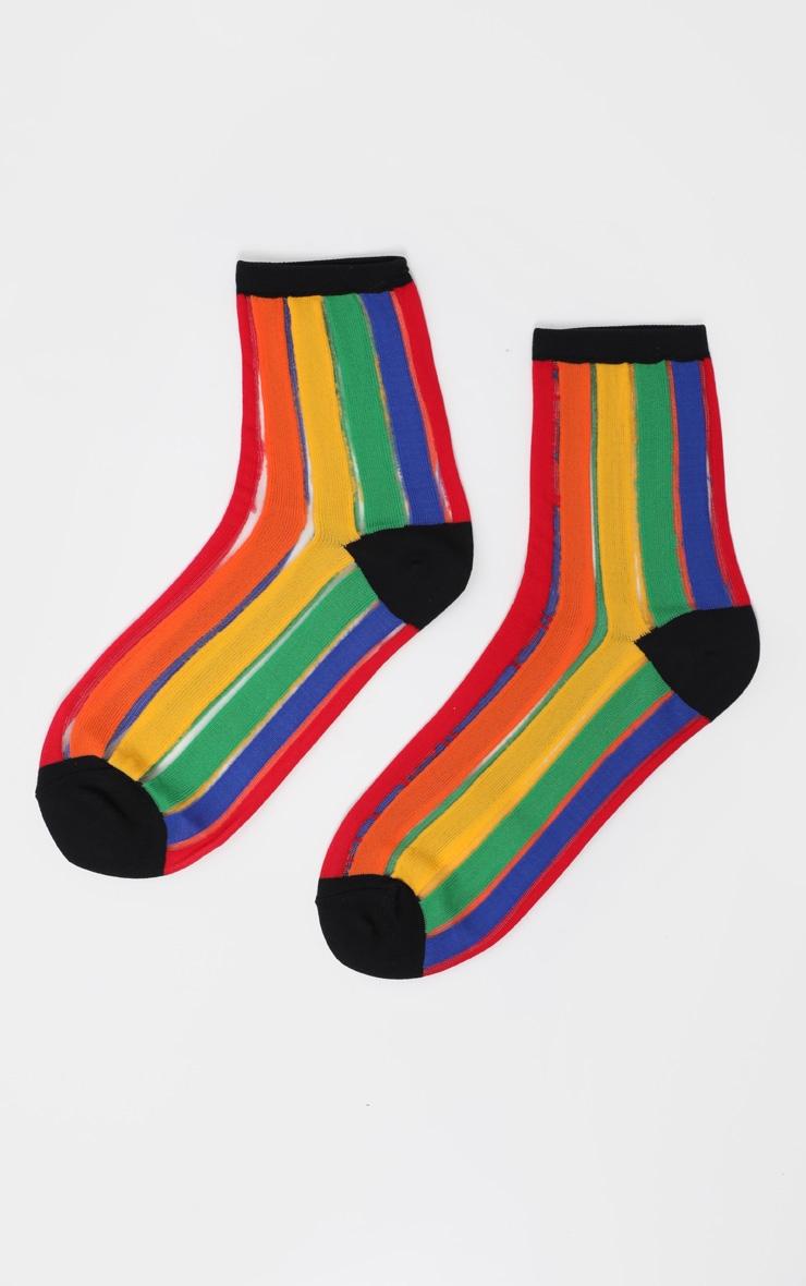 Multi Rainbow Socks  3