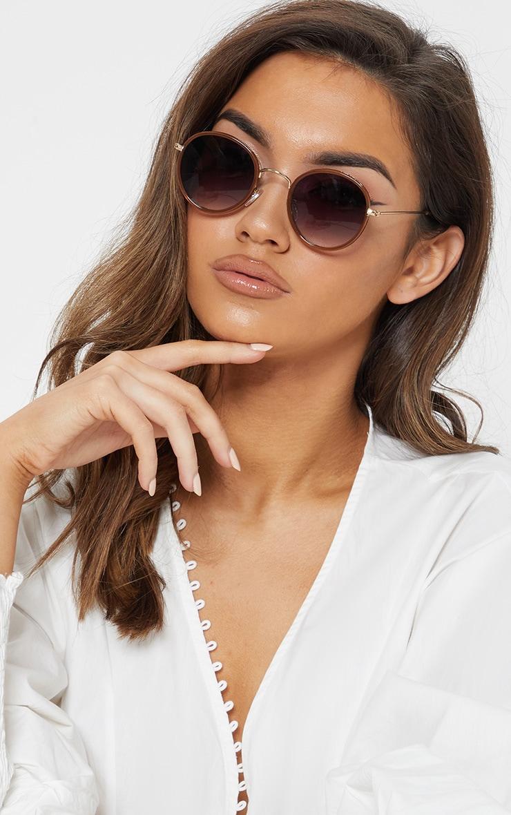 Brown Lens Round Frame Retro Sunglasses 1