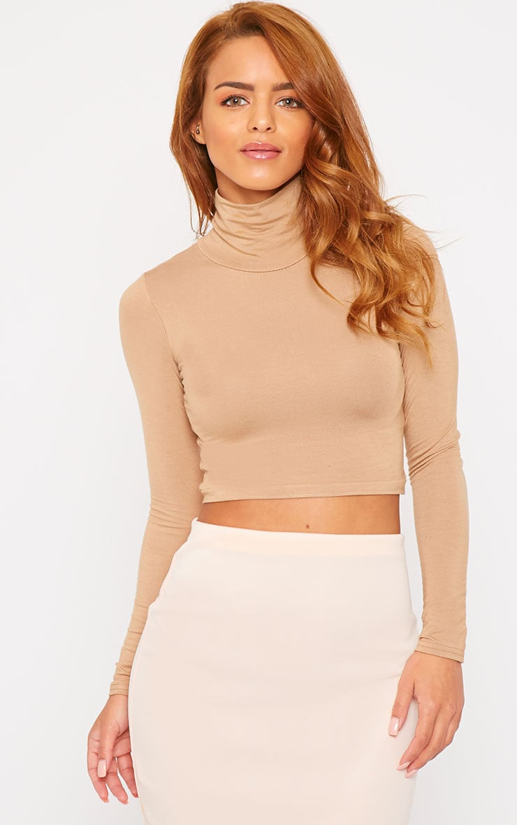 Basic Camel Roll Neck Crop Top 4