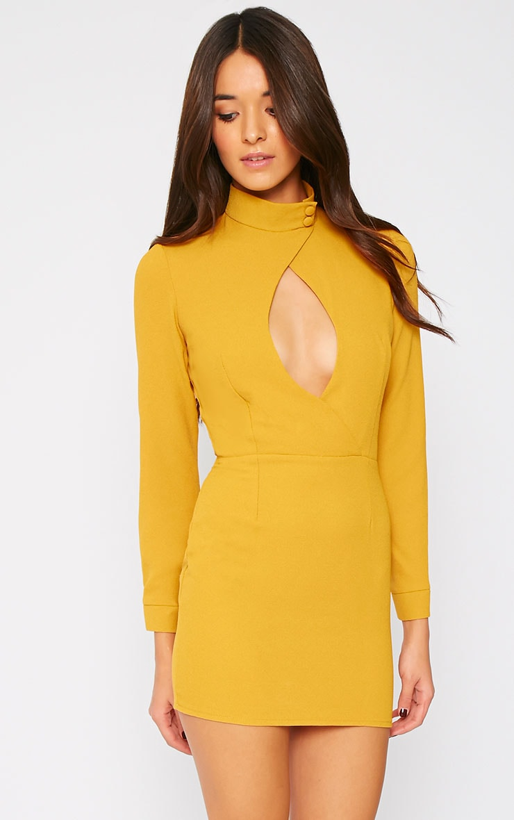 Edie Mustard Cut Out Dress 4