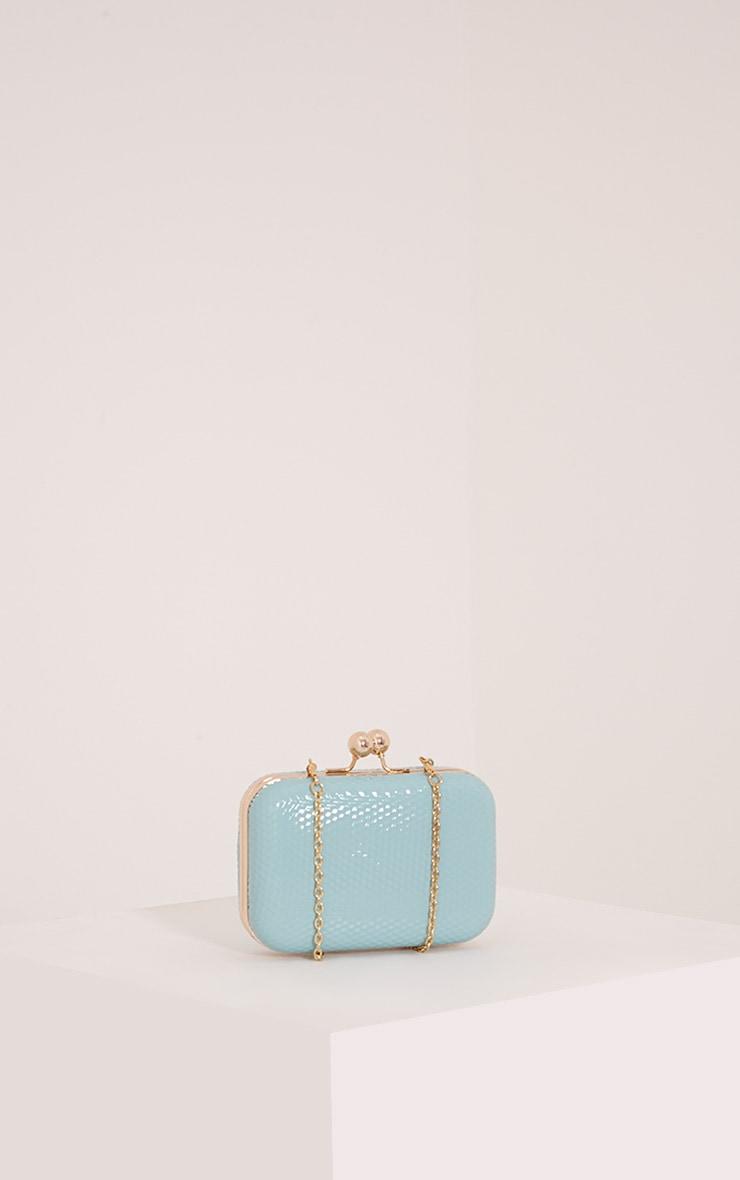 Morgan Mint Box Clutch Bag 4