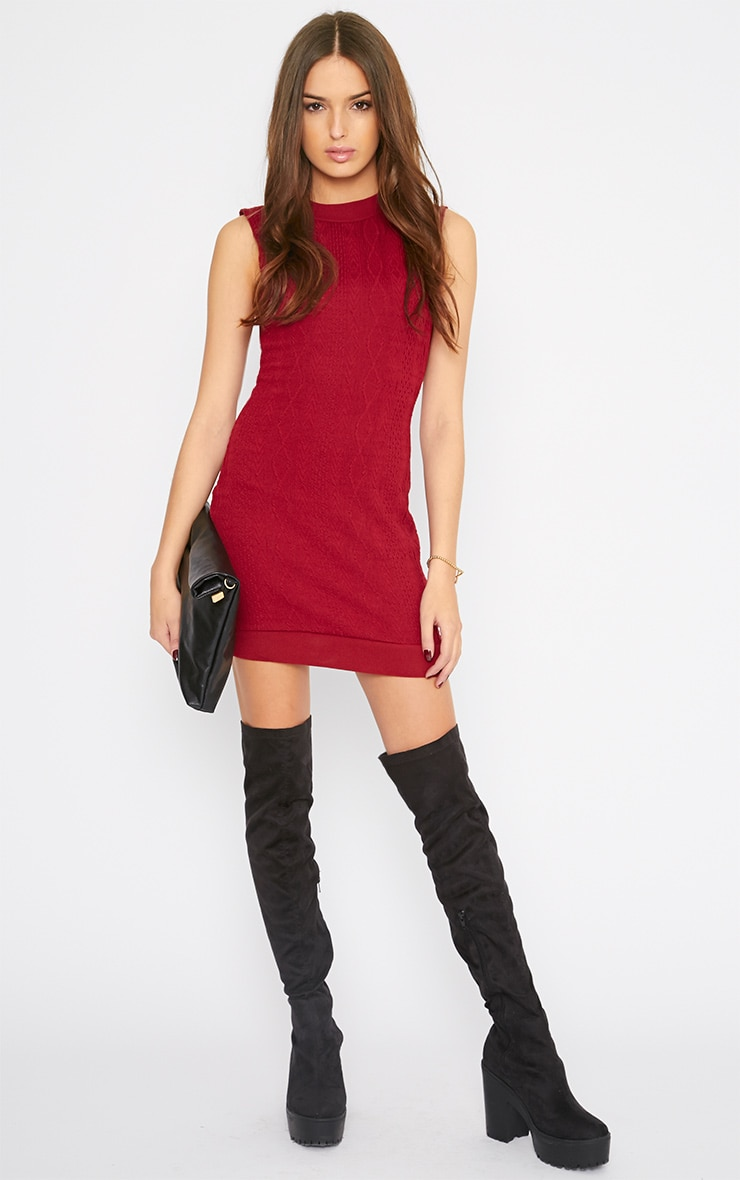 Darcie Red Cable Knit Textured Sleeveless Dress 5