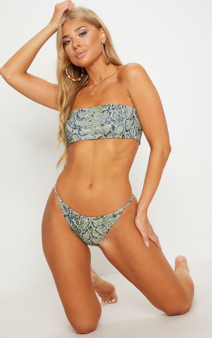 Green Snake Print Tanga Bikini Bottom 5
