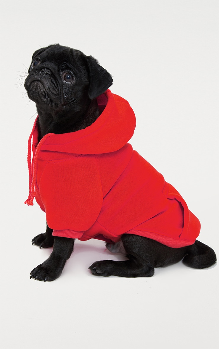 Red Doggy Hoodie 1