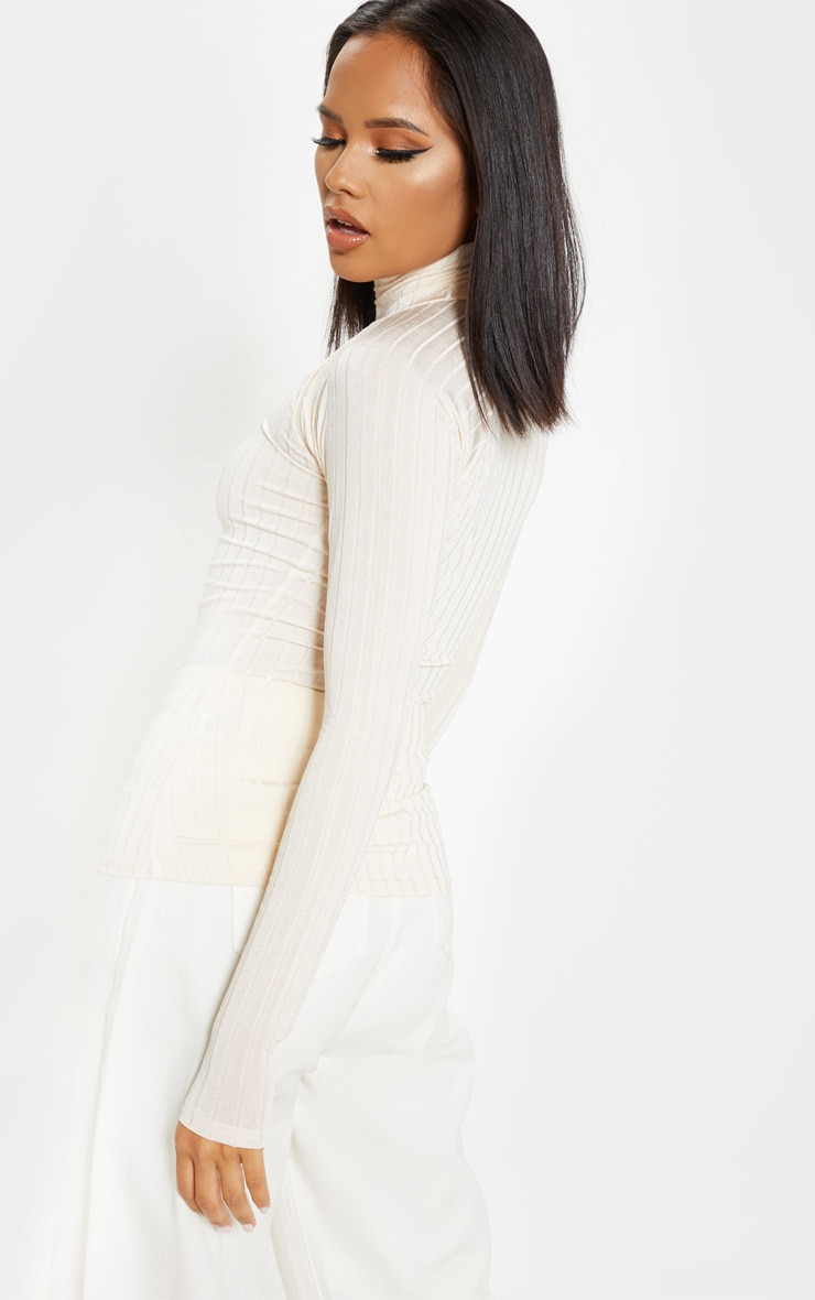 Champagne Slinky Rib High Neck Long Sleeve Top 2