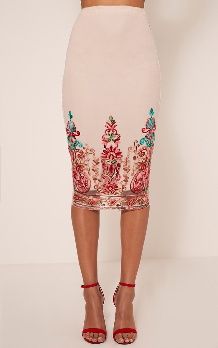 Kya Nude Embroidered Mesh Midi Skirt 3