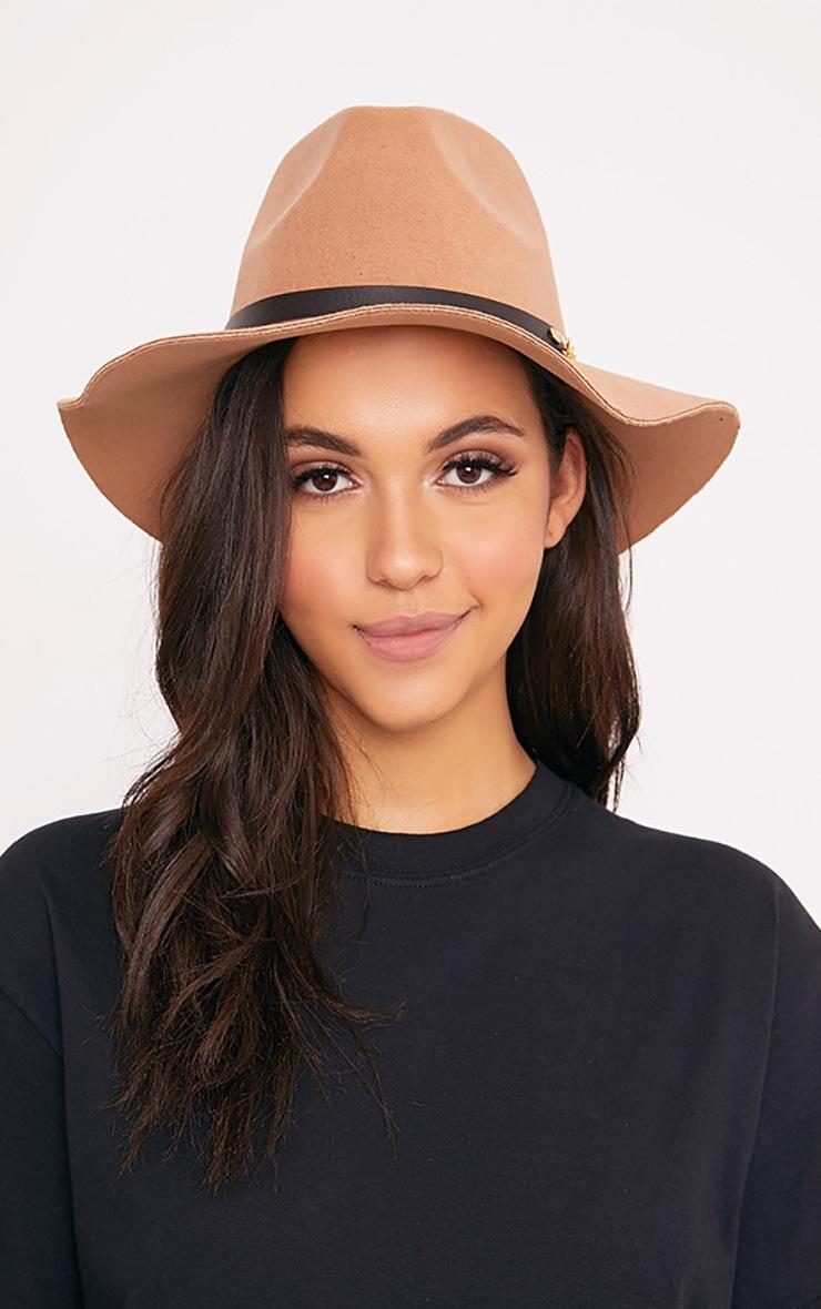 Honna Brown Fedora Hat 2