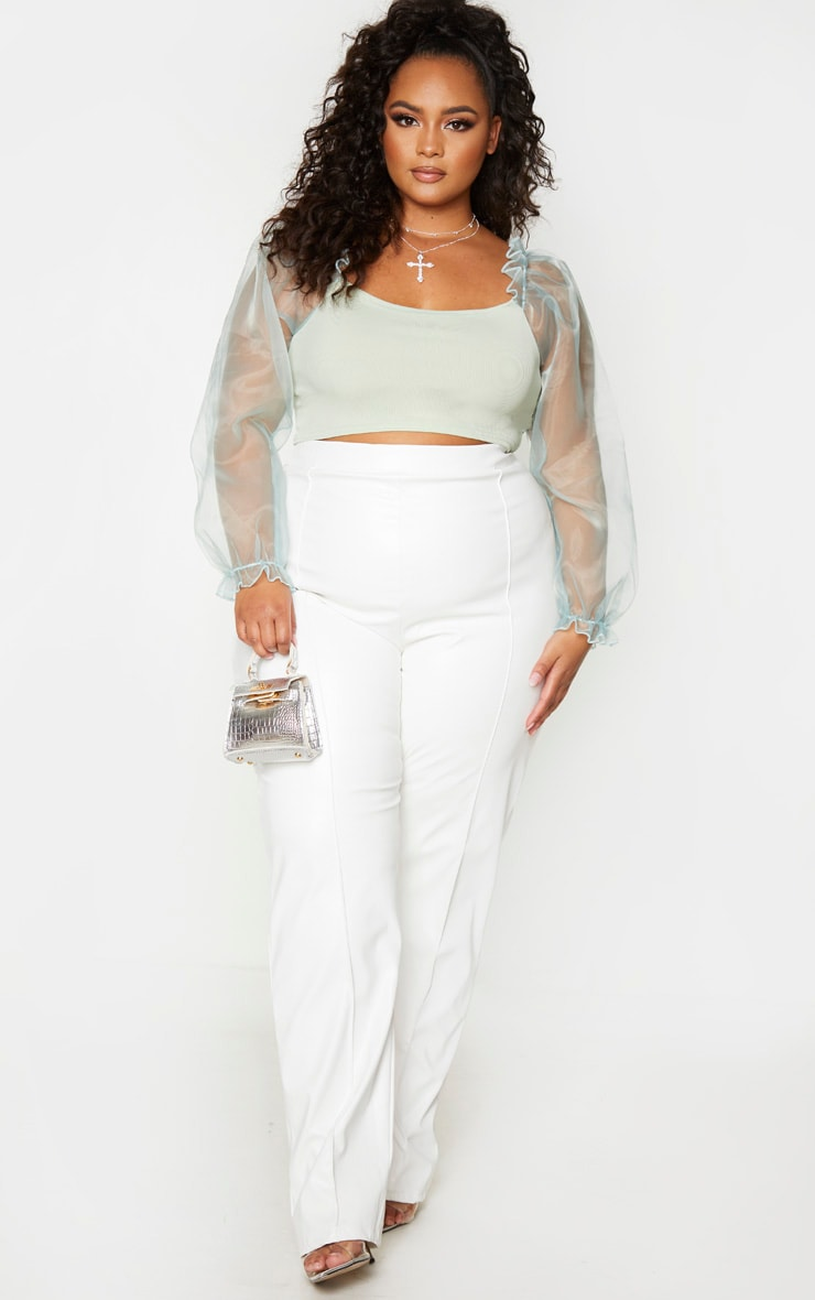 Plus Sage Green Organza Long Sleeve Top 1