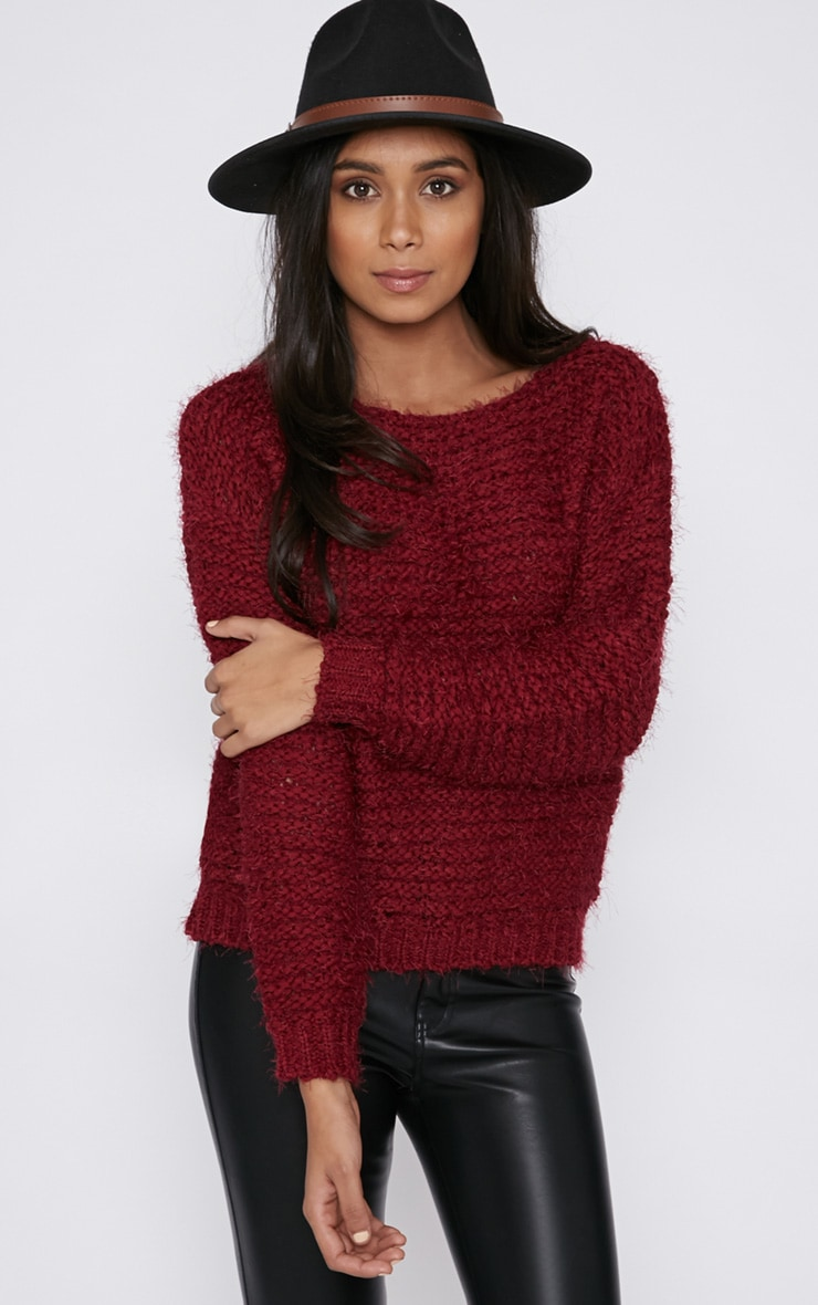 Hadley Burgundy Cropped Jumper  1